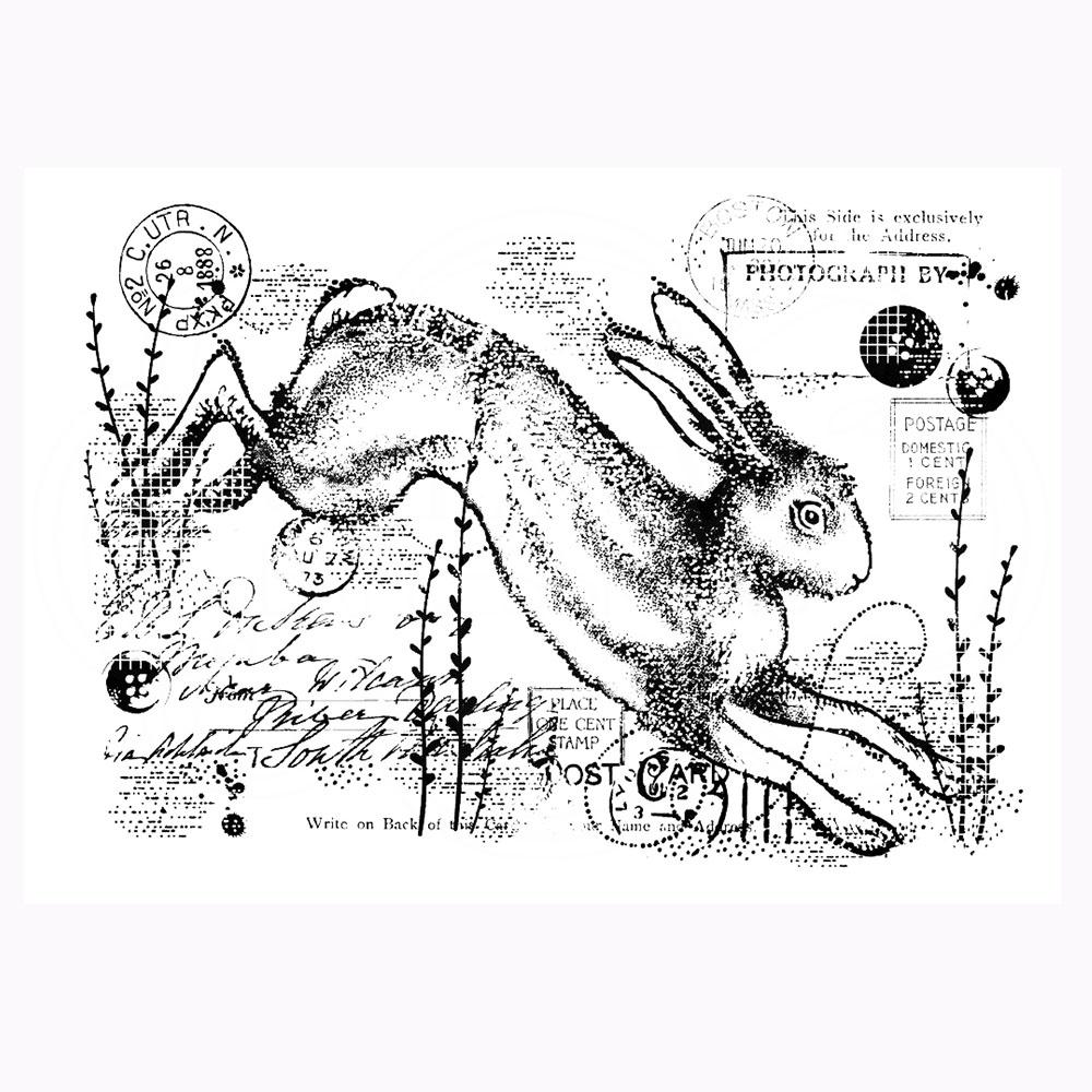 Vintage Hare Stamp